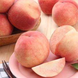 [과일香] 김천 복숭아 4.5kg(14-16과내) 상품이미지
